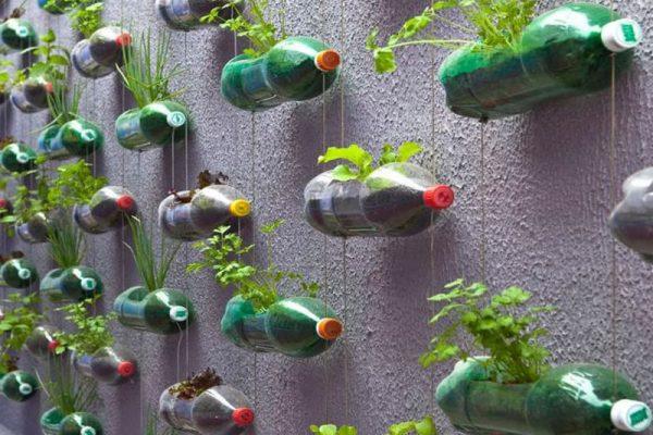 Des solutions écologiques pour les déchets plastiques ?